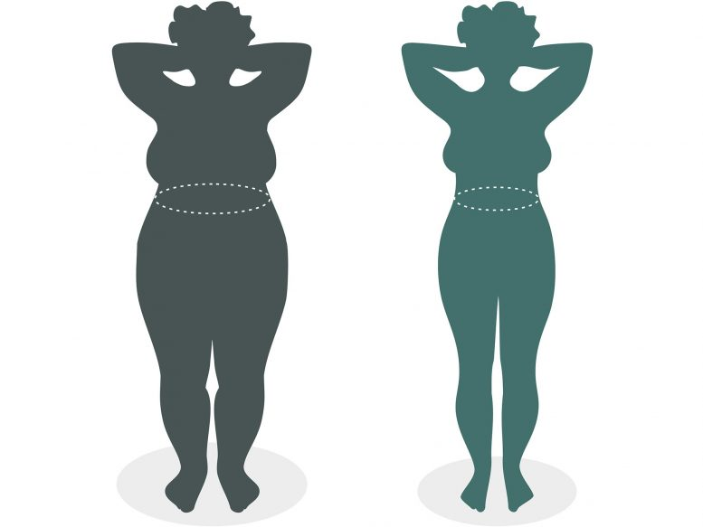 How to Get Rid of Cellulite in 12 Months With out Cellulite Creams, Lotions Or Exercise
